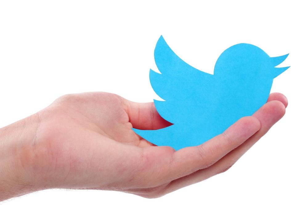 Larry Bird the Twitter Bird